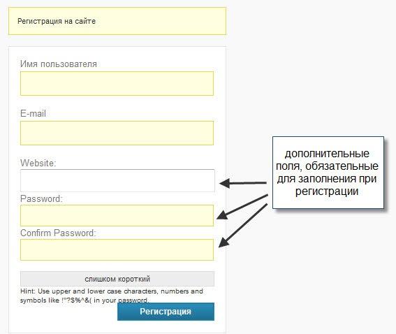 Защита от автоматической регистрации ботов   n-wp.ru