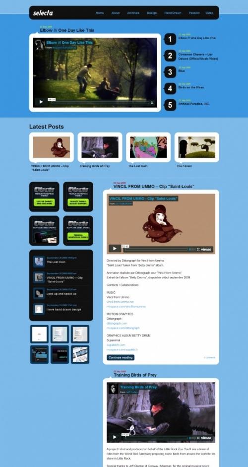 Красивая тема для видеоблога | Selecta | n-wp.ru