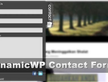 Как добавить красивую контактную форму   DynamicWP Contact Form   n-wp.ru