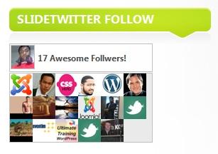 Как показать, кто читает вас в Твиттере | Slidetwitter follow | n-wp.ru