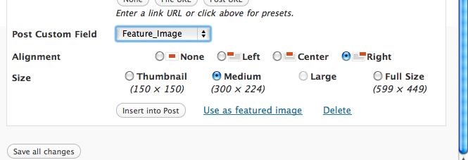 Как добавлять картинки в произвольные поля | Attachments as Custom Fields | n-wp.ru
