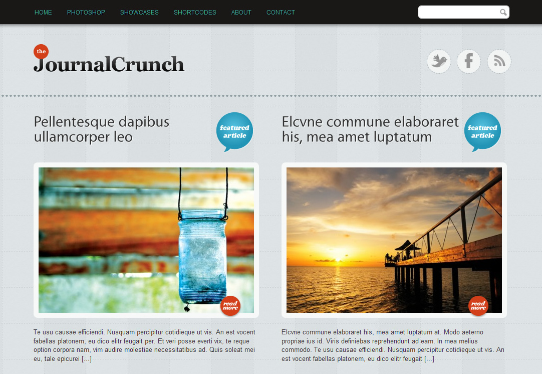 JournalCrunch - мощная тема для современного блога | n-wp.ru