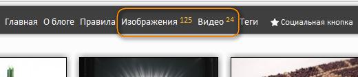 Как вывести количество опубликованных постов в определенной категории | n-wp.ru