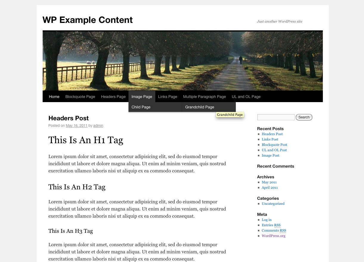 Как заполнить тестовый блог информацией | WP Example Content | n-wp.ru