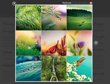 Как по ссылке открывать изображения в модальном окне | OrangeBox | n-wp.ru