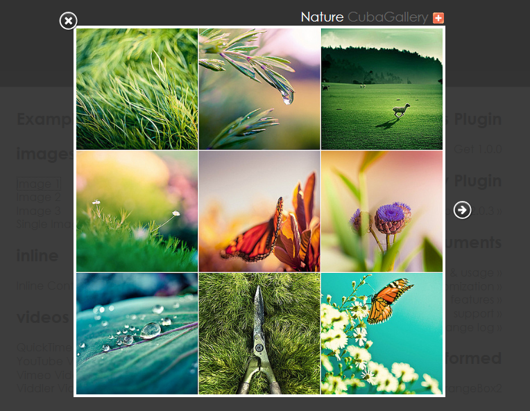 Как по ссылке открывать изображения в модальном окне | OrangeBox