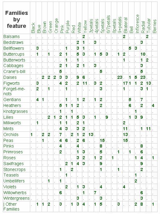 Как узнать, какие теги используются в разных категориях | Catagories by Tag Table | n-wp.ru