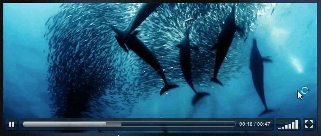 Шорткод для вставки HTML5 видео | n-wp.ru