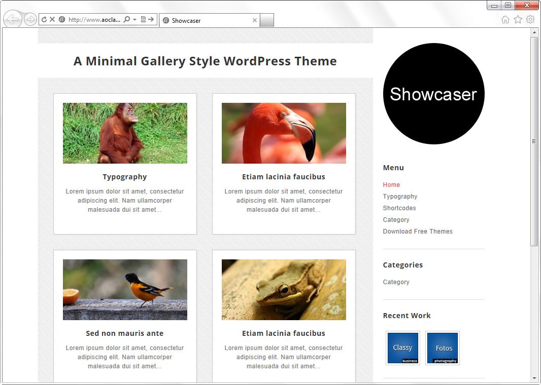 Showcaser - светлая минималистичная тема для фотоблога | n-wp.ru