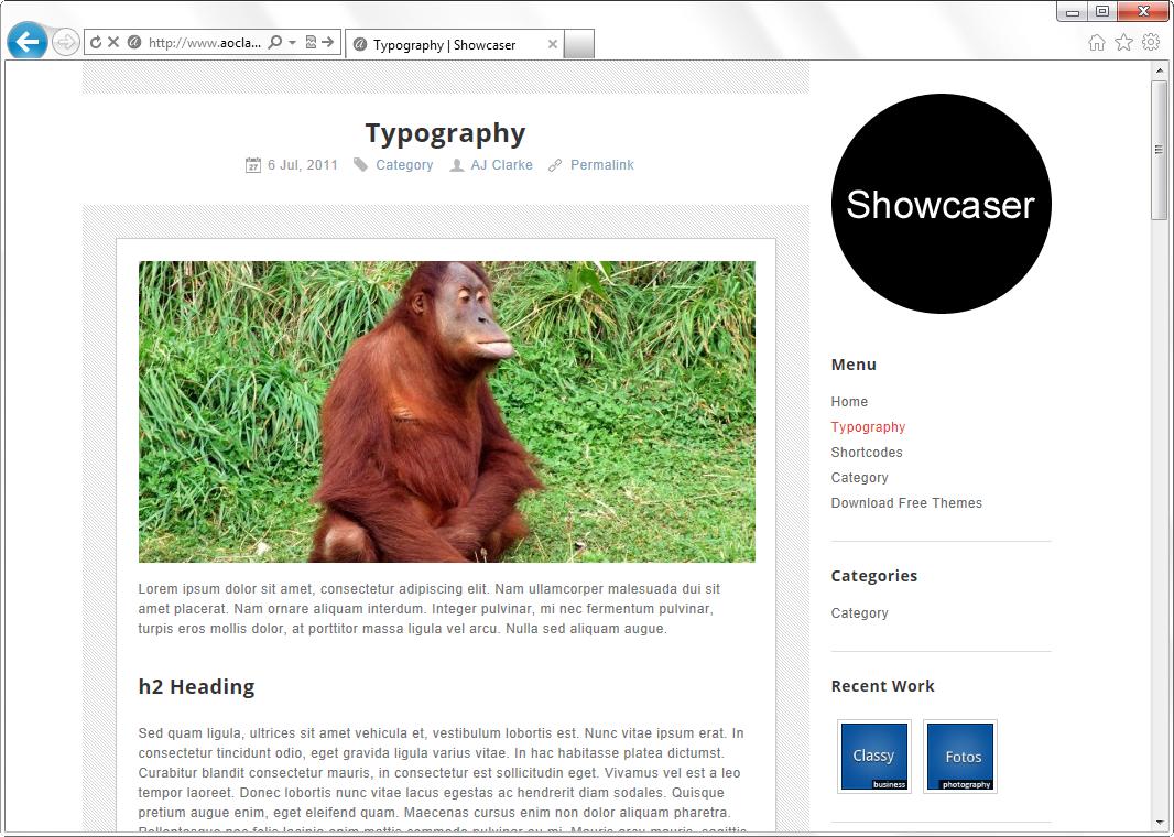Showcaser - светлая минималистичная тема для фотоблога