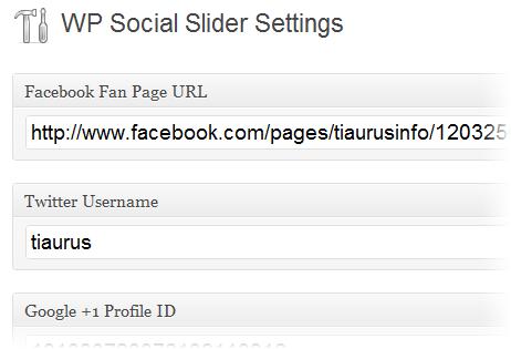 Как добавить трансляции из социальных сетей в блог - WP Social Slider (5)