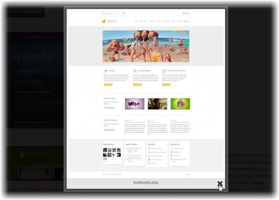 Как вывести все изображения поста в слайдере - плагин WordPress Gallery Plugin