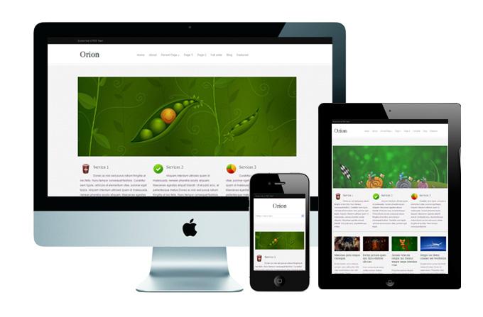 Orion - красивая, универсальная тема для личного блога и портфолио | n-wp.ru