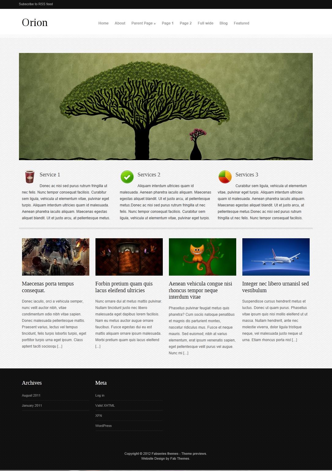 Orion - красивая, универсальная тема для личного блога и портфолио (1)