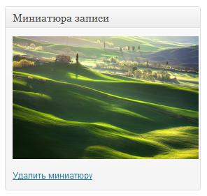Как автоматически устанавливать миниатюру записи | n-wp.ru