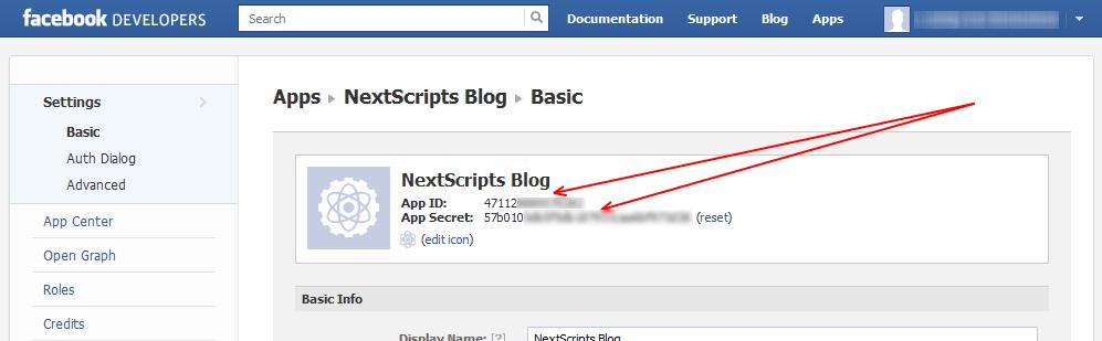 NextScripts - плагин для автоматической отправки постов в социальные сети (11)