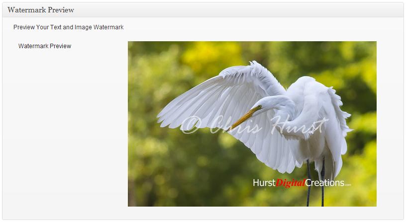 Signature Watermark - плагин для нанесения на изображения водяных знаков | n-wp.ru