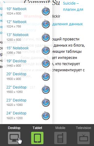 ScreenFly - сервис для проверки сайта на экранах с разным разрешением (5)