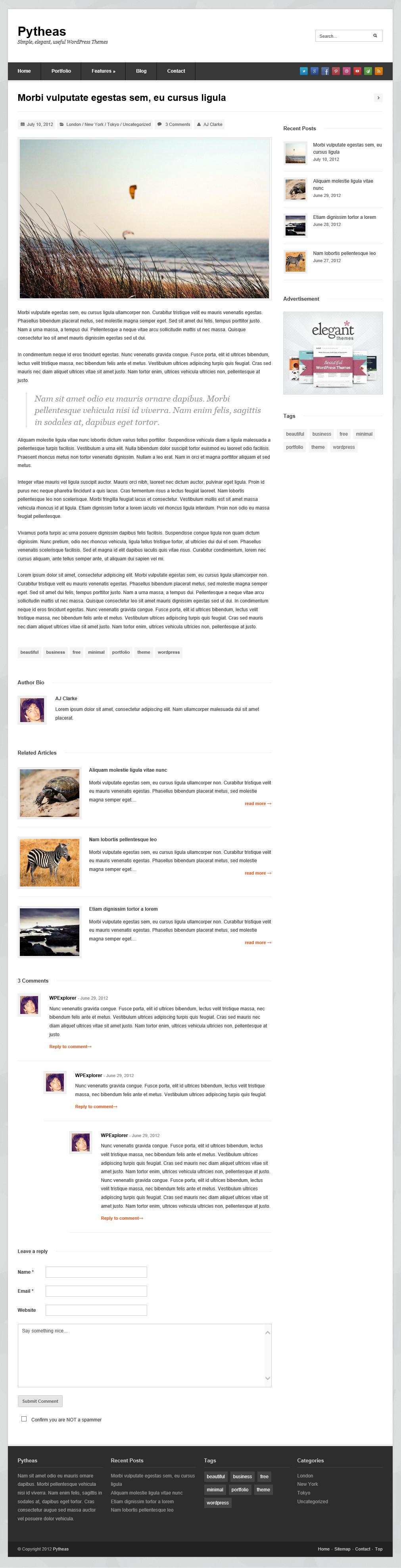 Pytheas - отзывчивая тема для корпоративного блога (5)