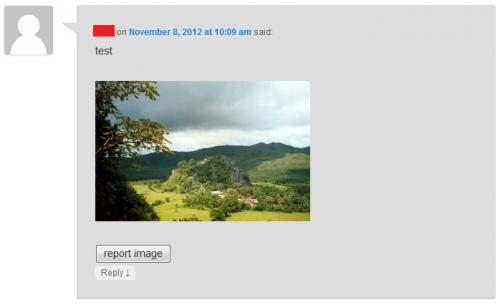 Imagements - плагин для вставки комментаторами изображений в блог | n-wp.ru