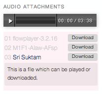 Audio Attachment Widget - виджет для автоматического показа и прослушивания аудио файлов, присоединенных к посту | n-wp.ru