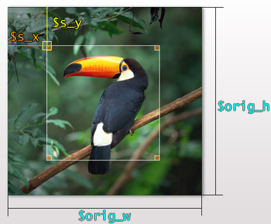 Как изменить позицию обрезания изображения при создании ее миниатюры - изменение системной функции и плагин Thumbnail Crop Position | n-wp.ru