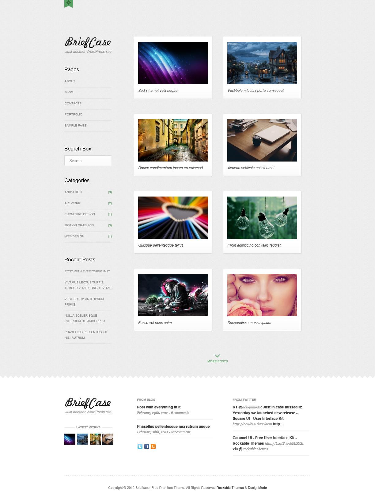 Briefcase - элегантная, светлая тема для личного сайта, фотоблога и портфолио | n-wp.ru
