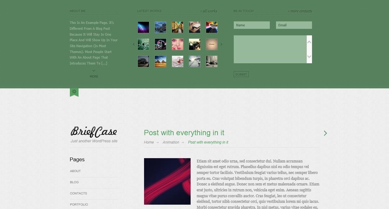 Briefcase - элегантная, светлая тема для фотоблога (4)