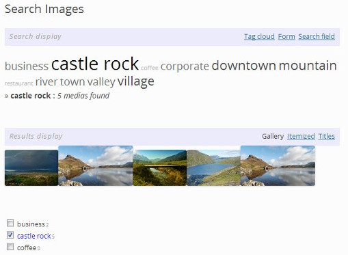 Как добавить метки к изображениям - плагин WP MediaTagger (4)