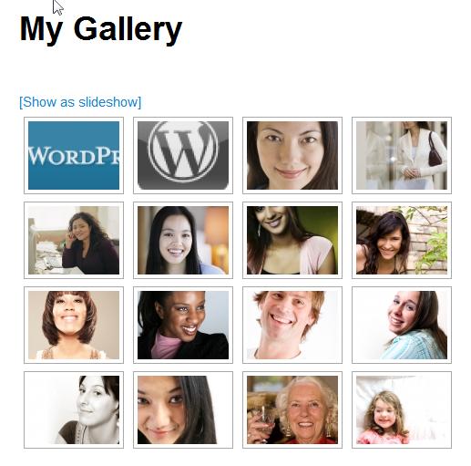 NextGen Gallery - функциональный плагин для создания галерей и альбомов (14)