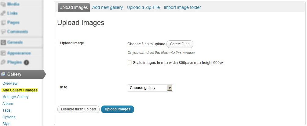 NextGen Gallery - функциональный плагин для создания галерей и альбомов (12)