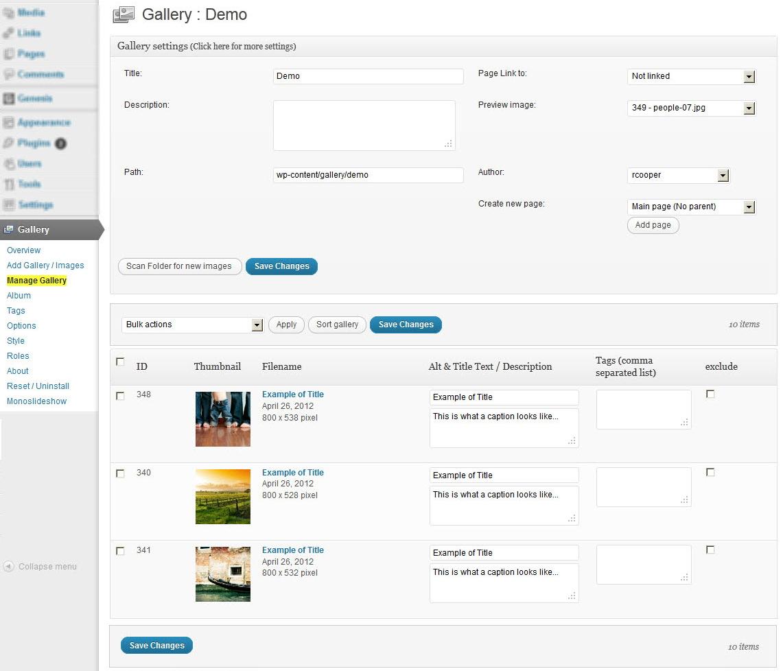 NextGen Gallery - функциональный плагин для создания галерей и альбомов (8)