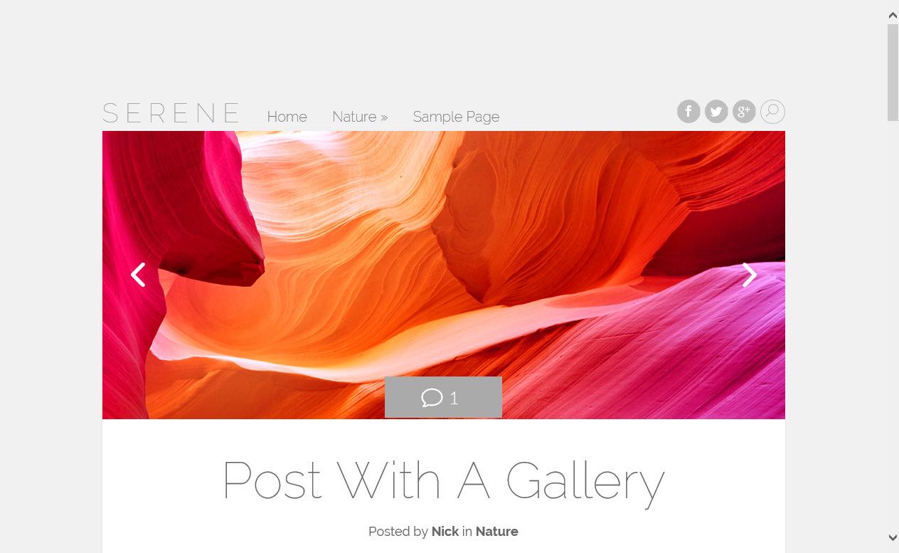 Serene - элегантная тема с адаптивным дизайном для личного блога (2)