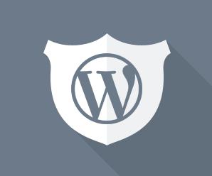 Как защитить Wordpress быстро и эффективно | n-wp.ru