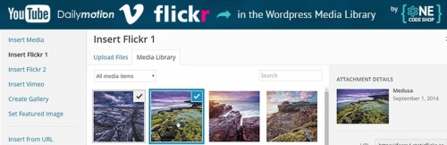 Remote Media Libraries -- плагин, добавляющий в библиотеку медиафайлов с внешних сервисов | n-wp.ru