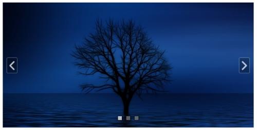 ZZ Image Slider -- простой в настройке слайдер изображений с красивыми эффектами   n-wp.ru